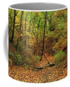Owl Canyon In Autumn 2 Coffee Mug