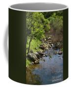 Owl Creek Coffee Mug