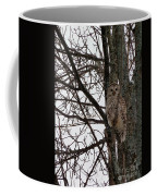Owl In Winter Coffee Mug