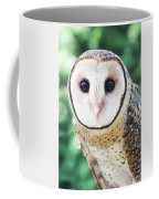 Owl Insight Coffee Mug