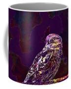 Owl Little Owl Bird Animal  Coffee Mug