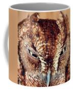 Owl Who? -brown Owl Coffee Mug