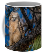 Owlet In A Fir Tree Coffee Mug