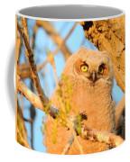 Owlet In A Spring Sunrise Coffee Mug