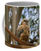 Owlet Lookout Coffee Mug