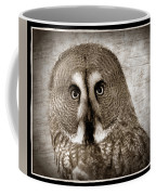 Owls Eyes -vintage Series Coffee Mug