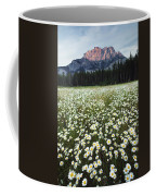 Ox-eyed Daisies And Cascade Mountain Coffee Mug
