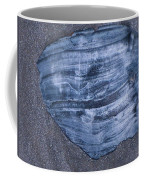 Oyster Shell Coffee Mug