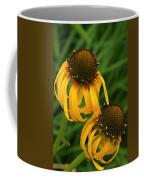 Ozark Yellow Coneflowers Coffee Mug