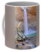 Ozone A 90 Foot Waterfall Coffee Mug