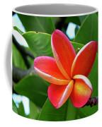 P1060059 Coffee Mug