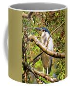 P2024983 Black Crowned Night Heron Coffee Mug