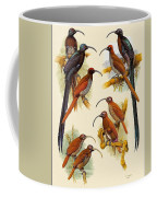 pa FB WilliamTCooper LesserBirdsOfParadise Penny Olsen Coffee Mug