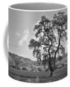 Pacheco Pass Coffee Mug