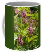 Pacific Bleeding Heart 2  Coffee Mug