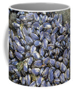 Pacific Blue Mussels Coffee Mug