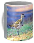 Pacific Golden Plover - 2 Coffee Mug