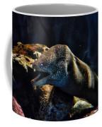 Pacific Moray Eel Coffee Mug