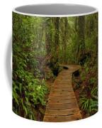 Pacific Rim National Park Boardwalk Coffee Mug