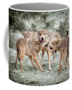 Pack Dispute Coffee Mug
