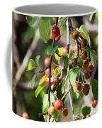 Painted Berries Coffee Mug