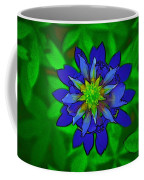 Painted Bluebonnet Coffee Mug