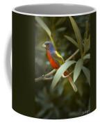 Painted Bunting Male Coffee Mug
