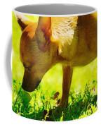 Painted Chihuahua  Coffee Mug