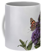 Painted Lady (vanessa Cardui) Coffee Mug by John Edwards