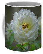 Painted Spring Camilia Coffee Mug