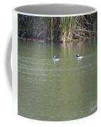 Pair Of Bufflehead Ducks  Coffee Mug