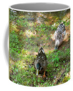 Pair Of Mallard Duck 5 Coffee Mug