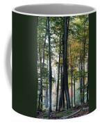 Palatine Forest Coffee Mug