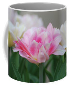 Pale Pink And White Parrot Tulips In A Garden Coffee Mug