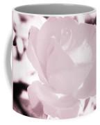 Pale Pink And White Rose Coffee Mug