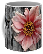Pale Pink Flower On Wood Coffee Mug by Patricia Strand