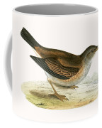 Pale Thrush Coffee Mug