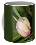 Pale Yellow And Pink Tulip Coffee Mug