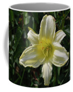 Pale Yellow Flowering Lily Blossom In A Garden Coffee Mug