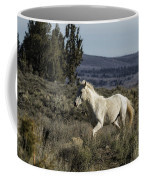 Pallaton Coffee Mug