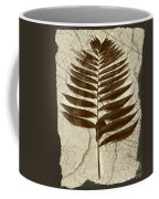 Palm Fossil Sandstone  Coffee Mug