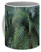 Palm Fronds Coffee Mug