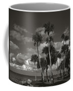 Palm Group In Florida Bw Coffee Mug