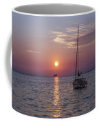 Palm Harbor Florida At Sunset Coffee Mug