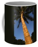Palm In Blue Sky Coffee Mug