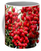 Palm Tree Seeds Coffee Mug