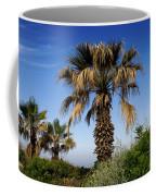 Palm Trees Growing Along The Beach Coffee Mug