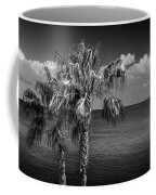 Palm Trees In Black And White At Laguna Beach Coffee Mug