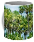 Palmetto Palm Trees In Sub Tropical Climate Of Usa Coffee Mug