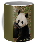 Panda Bear Eating Some Shoots Of Bamboo Coffee Mug